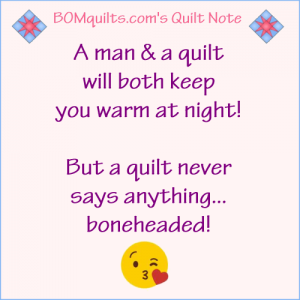 BOMquilts.com's Meme: A Man & a Quilt will Both Keep you Warm at Night!