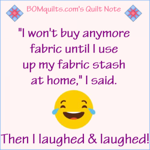 BOMquilts.com's Meme: I won't buy anymore fabric until I use up my fabric stash at home!