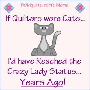 BOMquilts.com's Meme: If Quilters were Cats...!