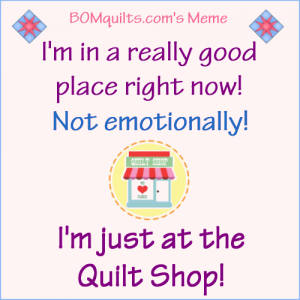 BOMquilts.com's Meme: I'm in a really good place right now!