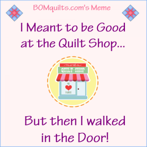 BOMquilts.com's Meme: I meant to be good at the quilt shop! I really did!