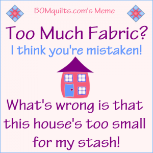 BOMquilts.com's Meme: Too much Fabric?