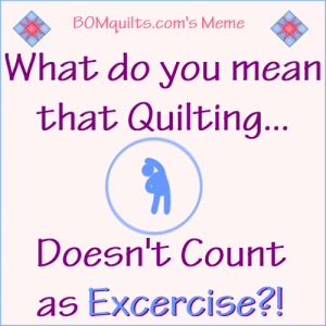 BOMquilt's Meme: Do you exercise the same way that I do?!