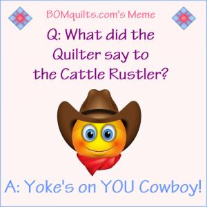 BOMquilt's Meme: Cowboy's can be so dense!