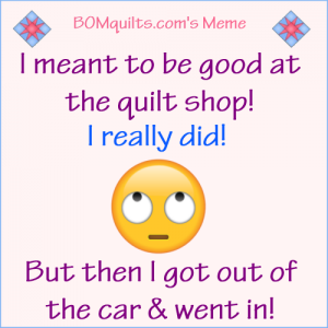 BOMquilt's Meme: I Meant to be Good! I Really Did!