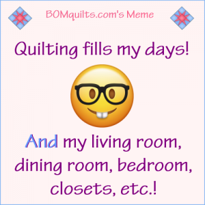 BOMquilt's Meme: Quilting Fills...Everything!