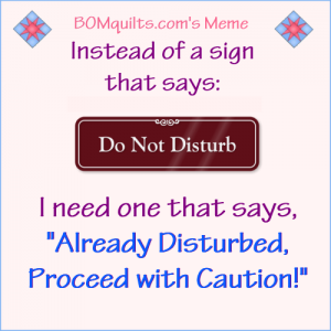 BOMquilt.com's meme: Do they make those kinds of signs? Do you need one, too?
