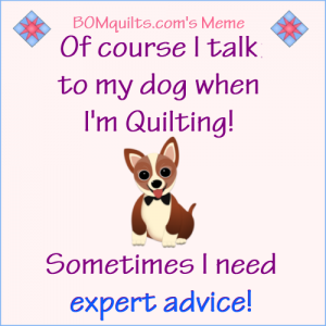 Do you do the same as I do? Except I don't let our dogs in my quilt studio! I just *say* that I'm talking to our dogs !